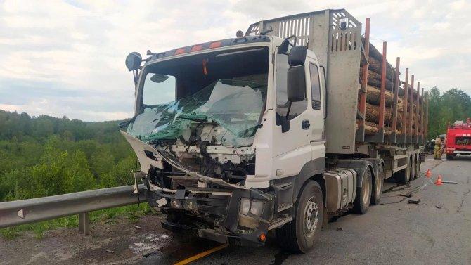 В ДТП с лесовозом в Челябинской области погиб человек2