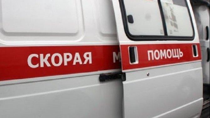Грузовик сбил двух малолетних детей в Ленобласти