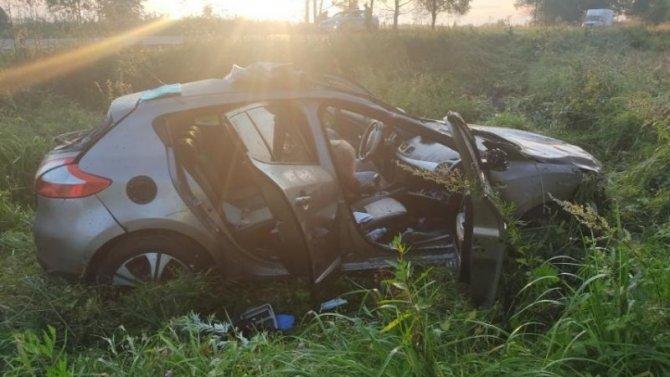 Женщина погибла в ДТП с лосем в Старорусском районе Новгородской области