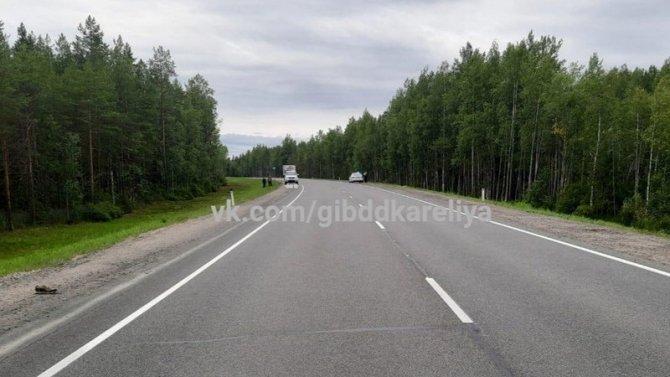 В Сегежском районе Карелии насмерть сбили пешехода