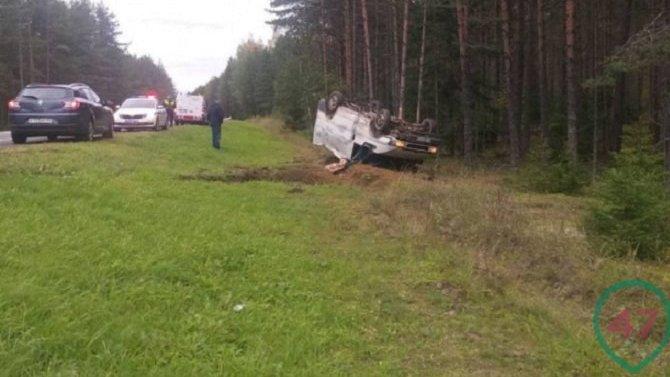 В ДТП в Ленобласти погиб водитель