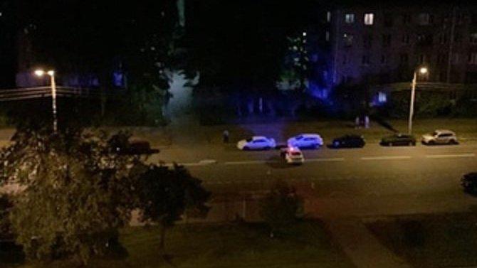 В Петербурге водитель насмерть сбил женщину и собаку и скрылся