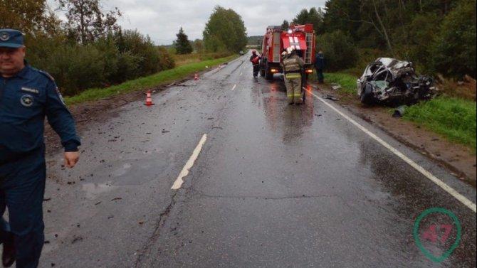 Водитель легковушки погиб в ДТП в Ленобласти