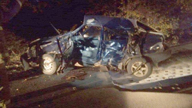 В Саратовской области ВАЗ врезался в дерево – водитель погиб