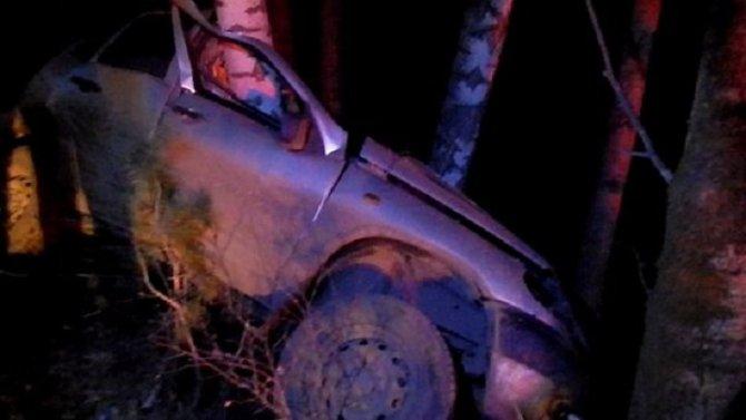 В Красноярском крае «Нива» врезалась в дерево – погибли двое